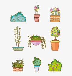 set of garden elements vector image