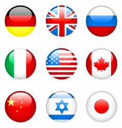 international flags vector image