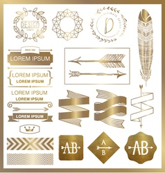 SET OF GOLD GRAPHIC DESIGN ELEMENTS vector image vector image