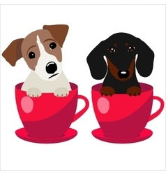 Jack Russell Terrier and Dachshund dog in red vector image