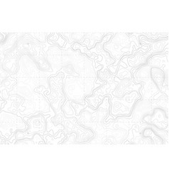abstract blank topographic contour map vector image