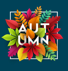 Autumn banner background with paper fall leaves vector