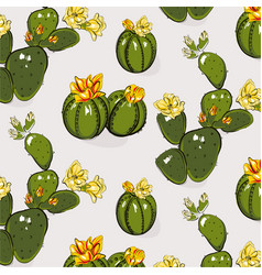 cactus greenery bloom yellow grey summer pattern vector image