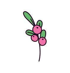cherry fresh fruit foliage nature icon vector image