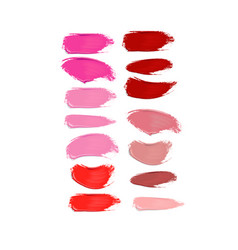 collection of lipstick smears on white background vector image
