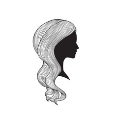 Hairstyle beauty salon banner woman with vector