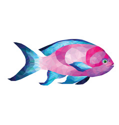 low poly origami pink blue tropical fish vector image