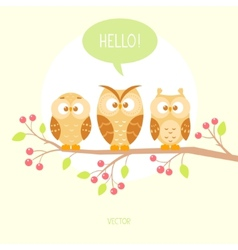 owls three vector image