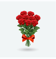 Realistic red rose bouquet vector