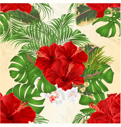 Seamless texture tropical flowers hibiscus vector