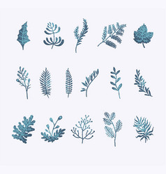 set floral winter vector image