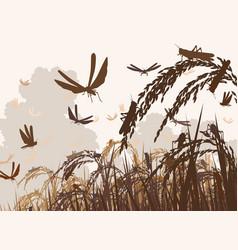 Swarming locusts vector