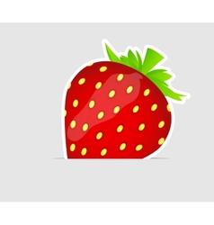 Sweet tasty strawberry vector image