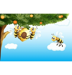 Three bees with a beehive vector