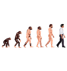 evolution from monkey to dancer vector image vector image