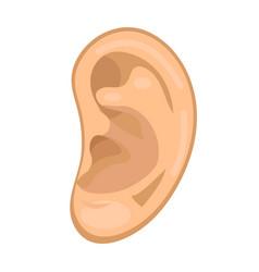 ear icon flat style anatomy medicine concept vector image