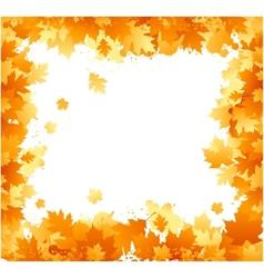 autumn floral ornament vector image