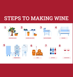 Banner with infographics and text wine vector