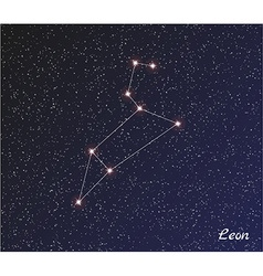 Constellation leon vector