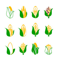 corn icon set isolated on white background vector image