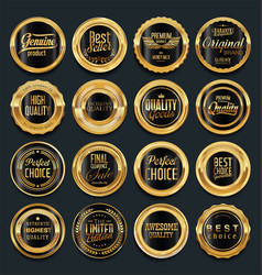 luxury golden design elements collection 5 vector image