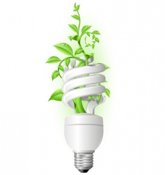 eco lamp vector image vector image