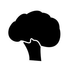 broccoli black color icon vector image vector image