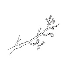 branch symbol isolated vector image