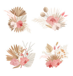 Luxury dried bouquets dry protea flowers vector