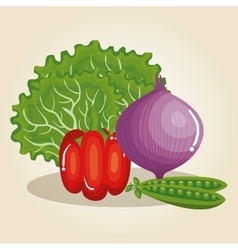 Set vegetables healthy food vector