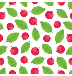 berrypattern-02 vector image