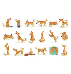 Brown dog set of normal everyday activities vector