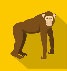 Brown monkey standing on its four legs icon vector