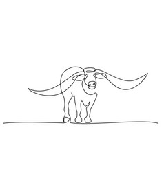 continuous one line drawing buffalo icon vector image