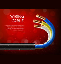 Electrical power cable with realistic copper wires vector