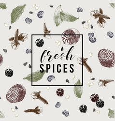 Pattern with spices and emblem - fresh spices vector