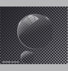 Transparent glass white pearl water soap bubble vector
