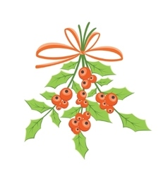 Twig of Holly vector image