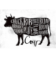 beef cutting scheme vector image