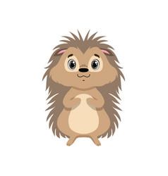 Cute hedgehog lovely animal cartoon character vector