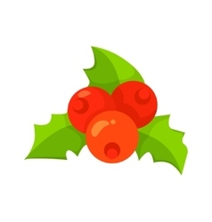 European Holly leaves and fruit isolated vector image