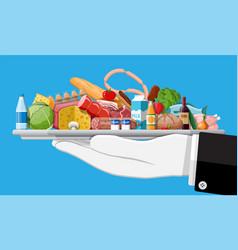 fresh organic food and drinks vector image