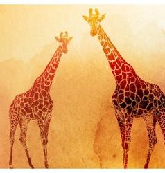 Vintage watercolor giraffes on old p vector