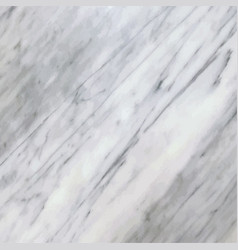 white marble background texture vector image