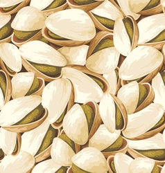 pistachios background vector image vector image