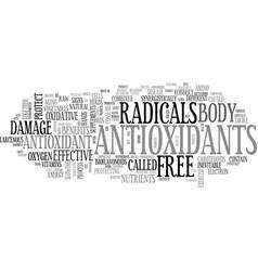 Antioxidant fruits text word cloud concept vector