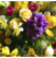 Blurred template backdrop with flowers with place vector