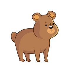 Cute bear wildlife image vector