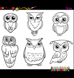 Owl characters coloring page vector