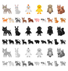 Toy animals cartoon icons in set collection for vector